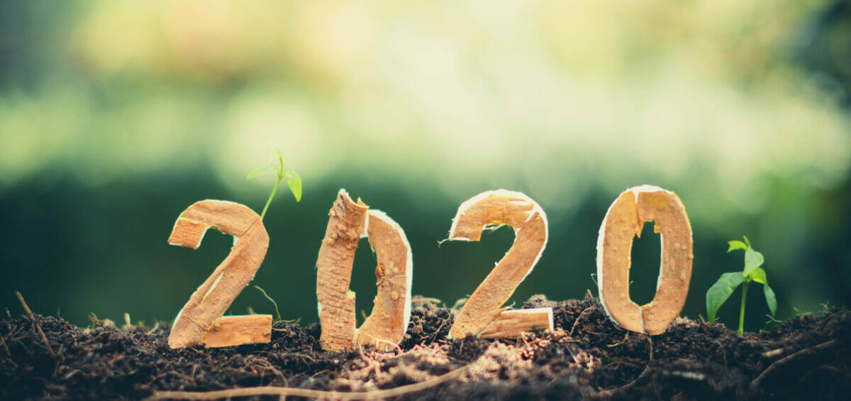 10 ways to make 2020 your most sustainable year yet