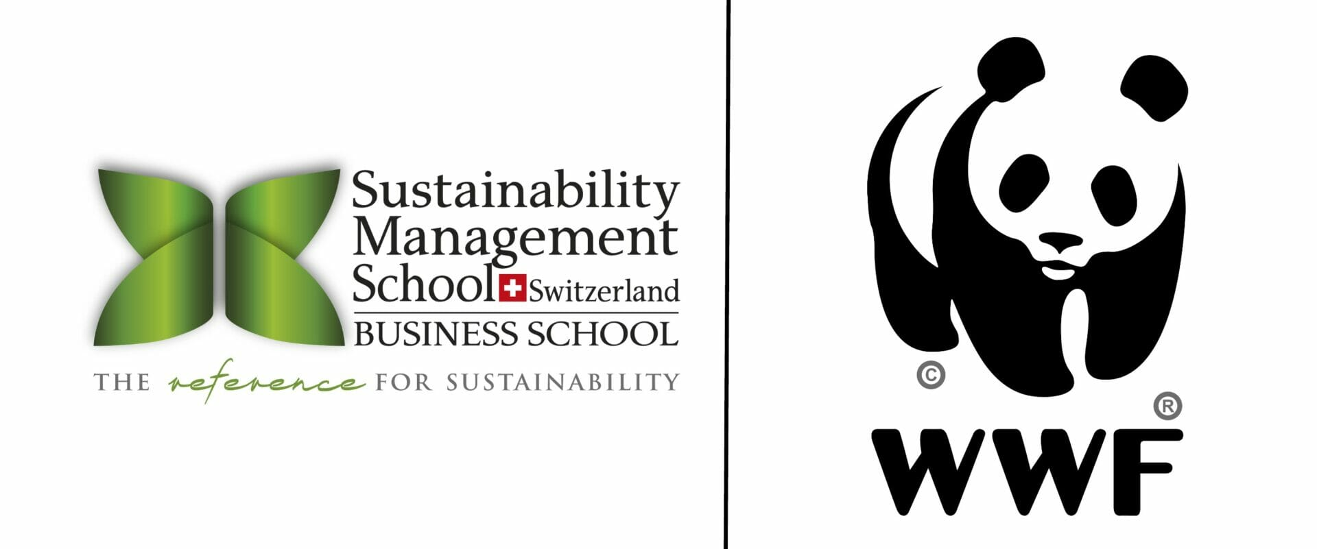 Guest Lecture, Jean-Paul Paddack, Executive Director at WWF International