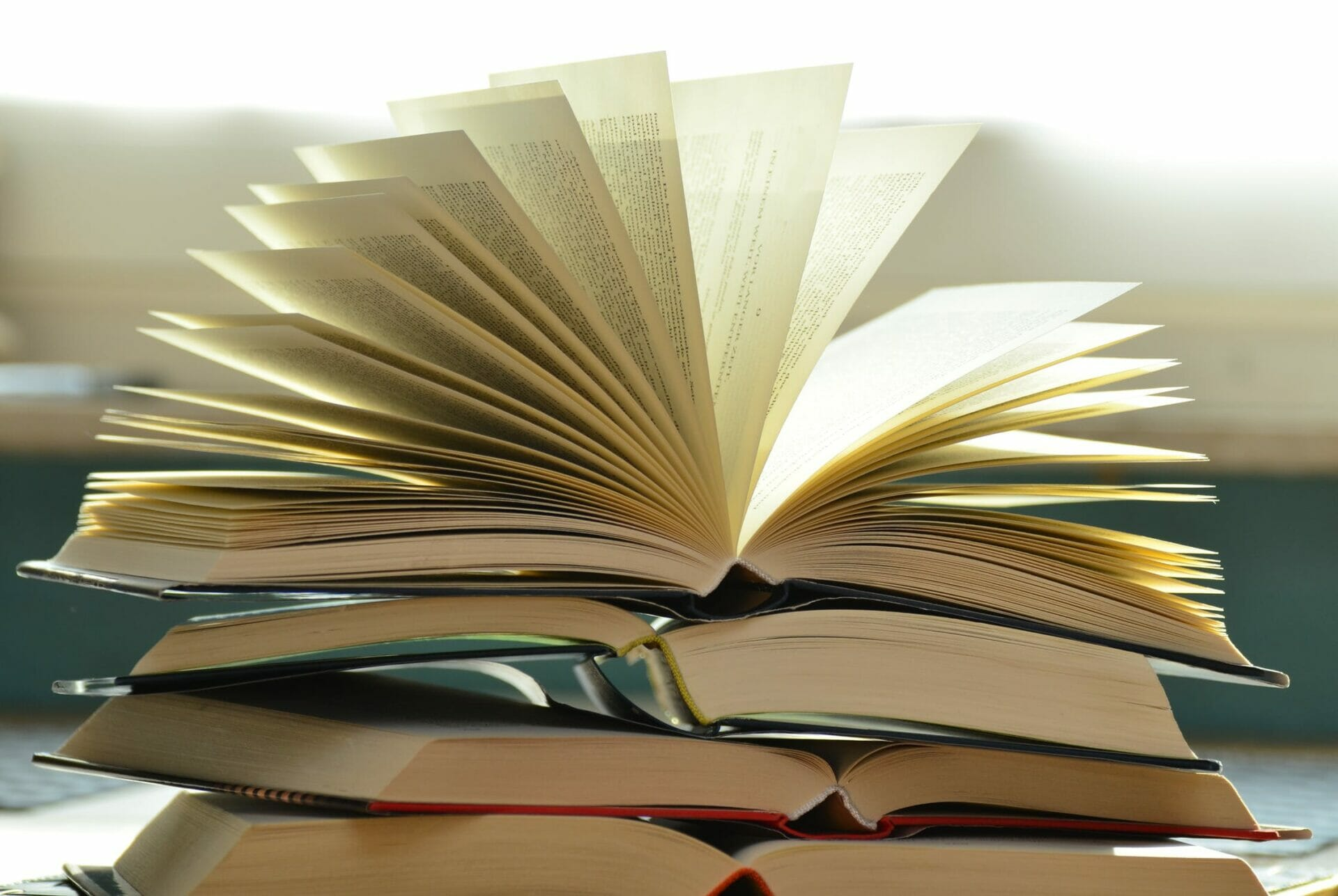 Seven Books about Sustainability and Environmental Justice to Read in 2020