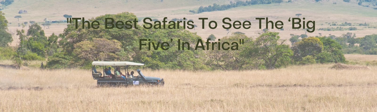 The Best Safaris To See The 'Big Five' In Africa